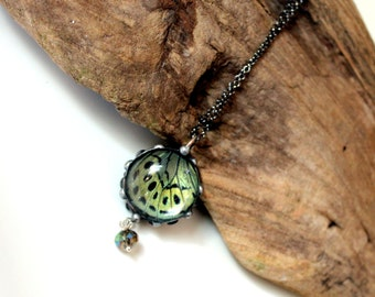 Real Butterfly Necklace, Bubble Butterfly, Asterope Optima Butterfly