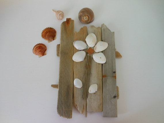 White Clam Shell And Driftwood Wall Art Flower Beach Decor SeaShell Rustic Nautical Coastal House