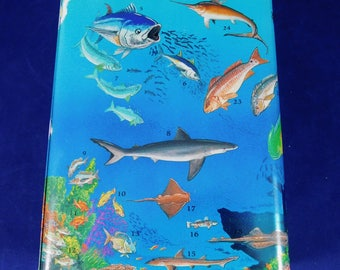 Fish Tin Box, 80 Species of Fish on This Box, Bottom Has Names and Numbers to Identify Fish, Collectors Tin Box