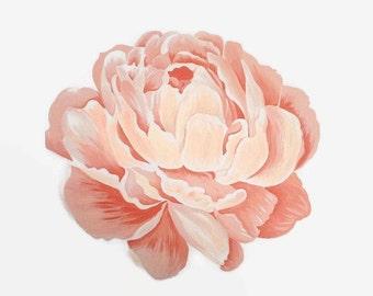 Peony Print, Flower Print, Peony Artwork, Peony Painting, Pink Peony, Pink Flower Print, Floral Print, Flower Painting, Flower Art