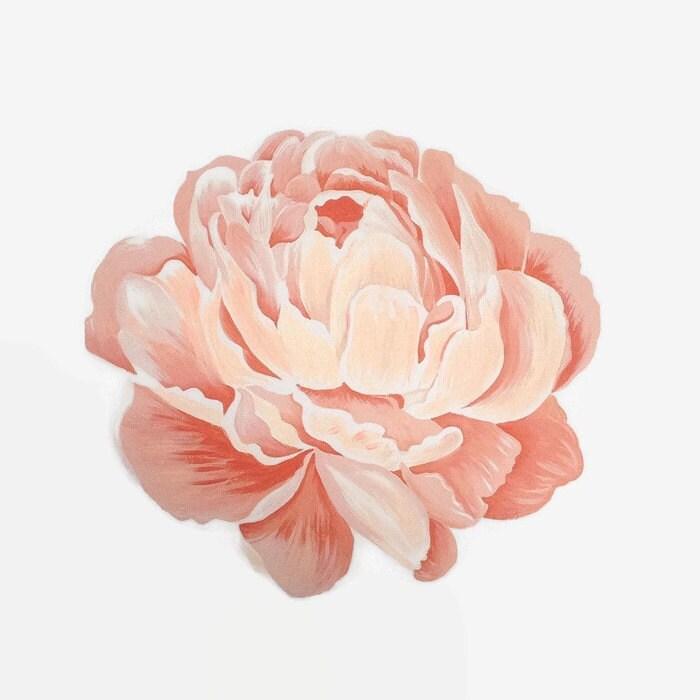 Peony print flower print peony artwork peony painting pink zoom mightylinksfo