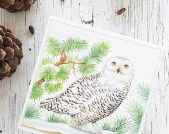 Christmas jewelry box with owl - Winter decor - Jewelry box - Owl decor - Christmas gifts