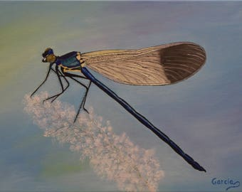 "Dragonfly Oil Painting, Damselfly, Original Oil Painting - ""Damsel Jewel"" (12"" x 16"")"