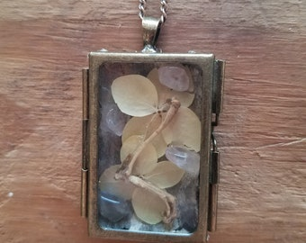 Real Mouse Paw Shadowbox Pendant