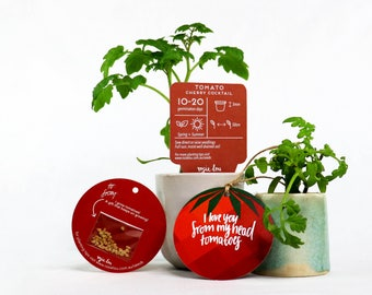 Tomato Pun Gift Tag with Seeds