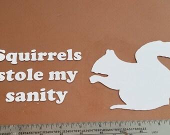 Squirrels Stole My Sanity Vinyl Decal