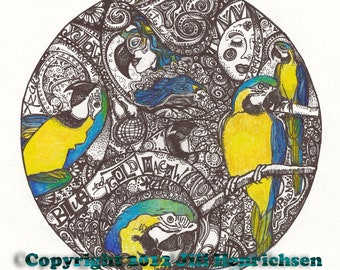 BLUE and GOLD MACAW Tribute Motif 12x12 Print