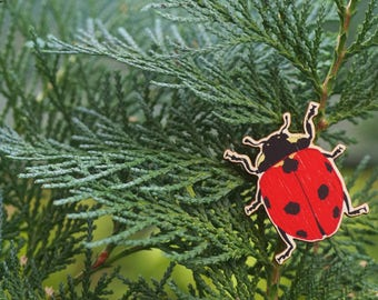 7-Spot Ladybird wooden brooch/badge