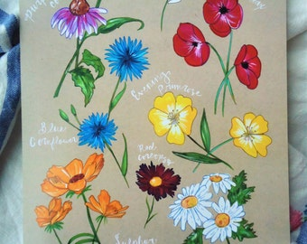 PRINT - Prairie Wildflowers