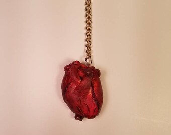 Polymer Clay Realistic Heart Necklace
