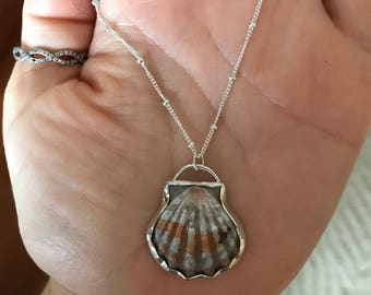 Hawaiian Sunrise Shell Necklace; Sterling Silver Pendant; Seashell ; Ocean Jewelry