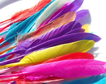20 feathers multicolored length approximately 10 cm! to customize, personalize bag, hat or made into pendants.