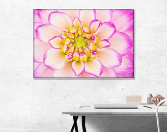 Dahlia Melody Dixie Flower, close up. Photo Wall Art Print