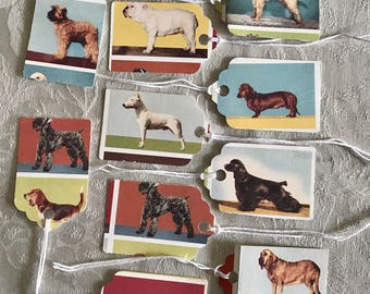 Doggie Gift Tags, 13, Card Stock