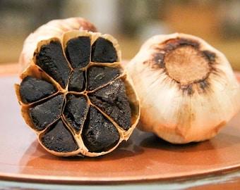 Texas Black Gold Garlic 4 oz