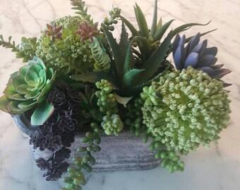 Succulent Arrangement with Featured Green Flowered Balls