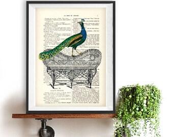 Fantasy Peacock Print, Peacock Artwork,Peacock on Bench, Steampunk, Gift for Men, Office Art, Wall Art Prints, Wall Decor