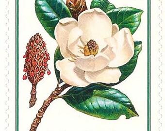 Unused 1998 Southern Magnolia Tree -  Flowering Trees - Postage Stamps Number 3193