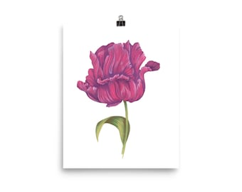 Tulip flower print wall art