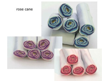 Pick your favorite rose cane!