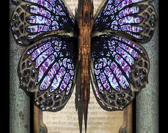 Crypto-Entomology Art Print by Brian Giberson - The Glass Butterfly of Notre-Dame