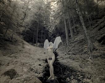 Verehren Natur heidnischen nackt Kunst weiblichen Aktmodell im Wald Infrarot Fine Art Fotoabzüge - Priesterin in Infrarot - 05 - Reifen