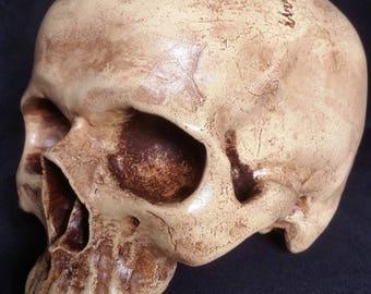 Film Prop Replica Human Skull