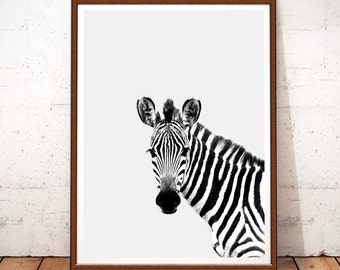 Zebra Print, Zebra Prints, Zebra Printable Art, Zebra Photography, Safari Nursery Art, Safari, Zebra Art, Zebra Wall Art, Zebra Black White