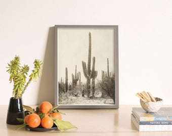 Vintage Cactus Print, Cactus Poster, Cactus Wall Art, Succulent Print, Southwest Decor, Minimal Cactus, Desert Decor, California Decor