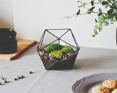 Geometric Glass Terrarium Container, Father's Day Gift, Shelf Accessories, Wedding Decor, Plant Lovers Gift, Moss Planter, Succulent Planter
