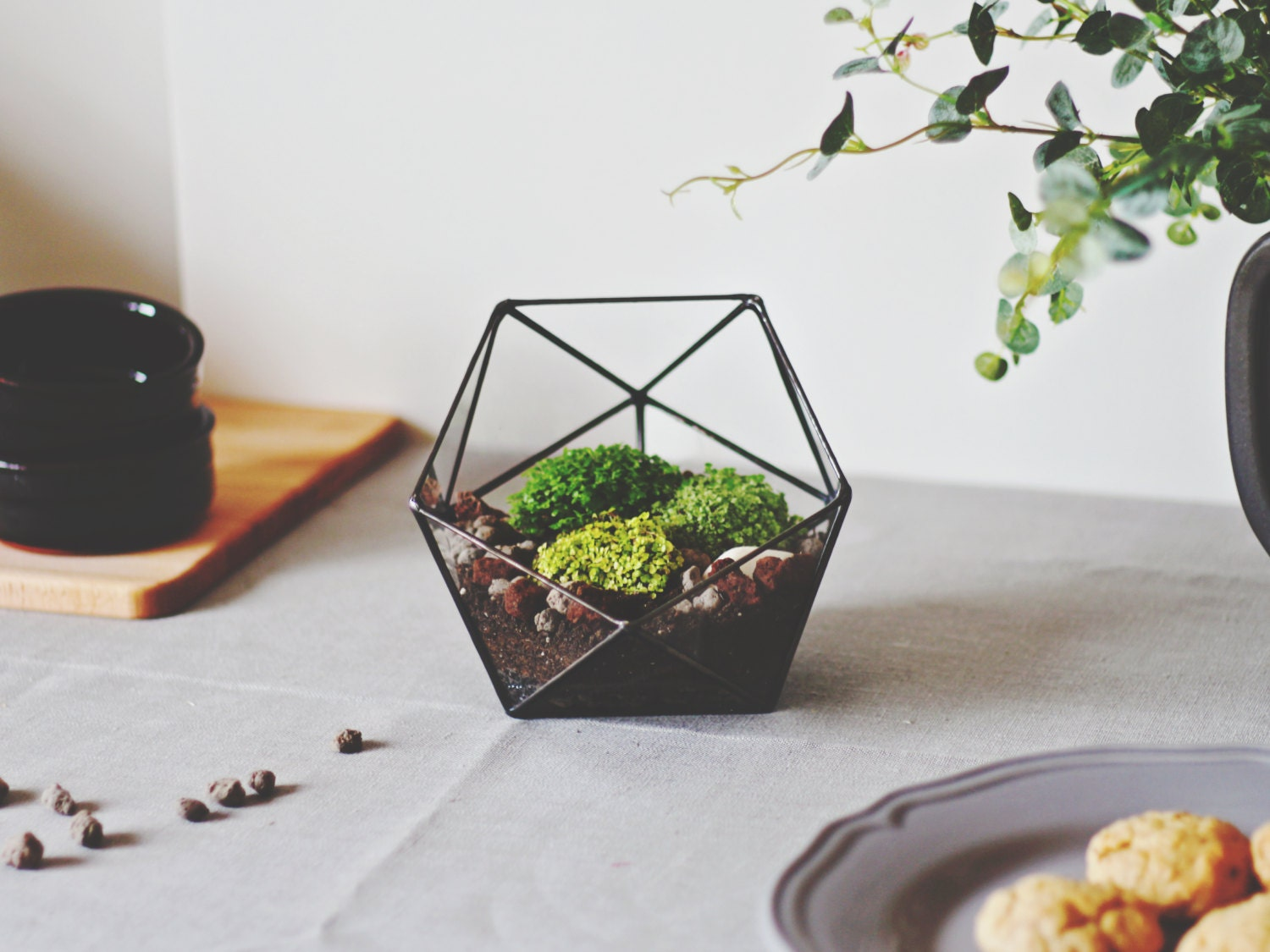 geometric glass terrarium container valentine's day gift - 🔎zoom
