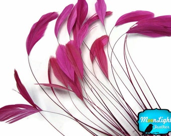 Pink Stripped Feathers, 1 Dozen - HOT PINK Stripped Coque Tail Feathers: 596