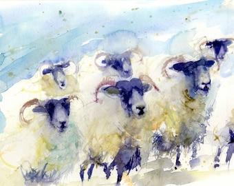 LIMITED edition print of  watercolour  SHEEP 1888wall art, home decor, nursery art, wildlife animal art.  hand signed
