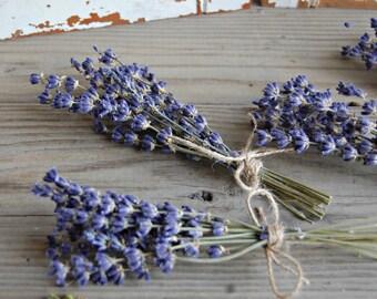 Dried Lavender  Bunches / SIX each Mini Lavender Bouquets / Sprigs / Wedding Decor /Shower Decor