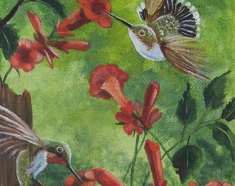 Hummingbird Limited Edition Aceo Limit 20