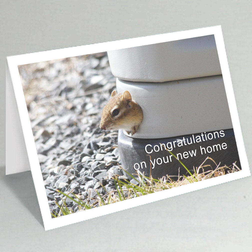 New home card funny cards chipmunk congratulations zoom kristyandbryce Image collections