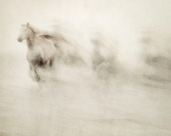 "Horse Art, Abstract Art Prints, Fine Art Photography, Nature Photography, Running Horses, Minimalist Art, Large Art ""Ghosts Among Us"""