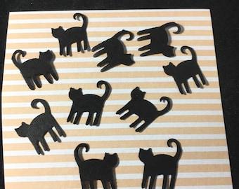 Cats Halloween Cats Black Cats 50 Count