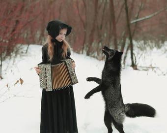 Fox Songs