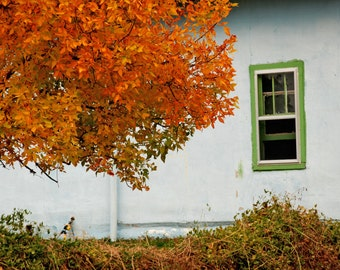 Let the Breeze In - travel photograph - roadside building house america autumn