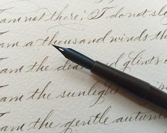 5 Vintage Calligraphy Nibs - Esterbrook 355