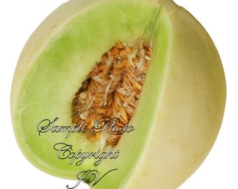 Green Honeydew Cantaloupe 30 Seeds Vegetable Seeds Green Heirloom Sweet Green Aromatic Fruit Natural Non GMO