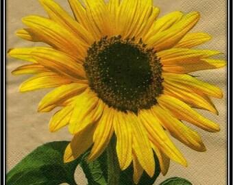 "napkin ""Sunflower flower"""