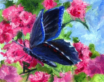 Butterfly Glory Original Oil aceo Painting