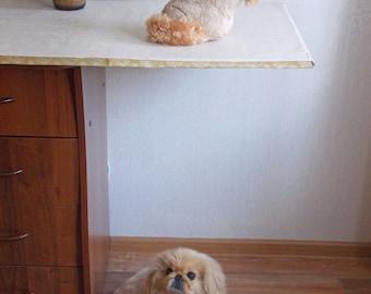 Dog, dog toy, plush dog, plushies, Pekingese, stuffed animal, stuffed dog, kawaii plushies, cute plushies, Beige dog, Haircut Dog, MODEL 1