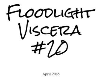 Floodlight Viscera #20 - 8 Page Mini Zine, Physical Copy