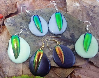 Statement Ecofriendly Tagua Earrings - Sustainable Jewel Beetle Jewelry - Natural Beetle Earrings - Science Gift - Beetle Earrings