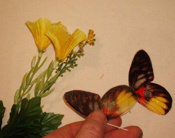 Yellow Twinkle Fairy Wings