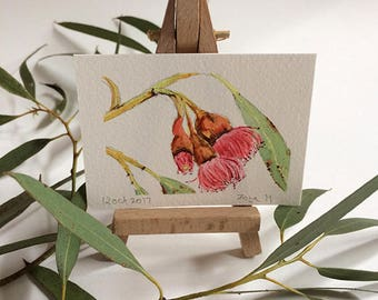 Original watercolor ACEO Eucalyptus flowers - Australian floral painting - miniature botanical art - artist trading card - ACEO flower