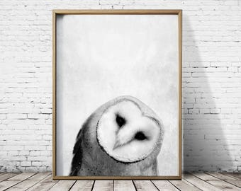 Bird Print Owl Print - Woodlands Print - Owl Wall Art - Owl Poster - Owl Art -  Animal Prints - Owl Decor